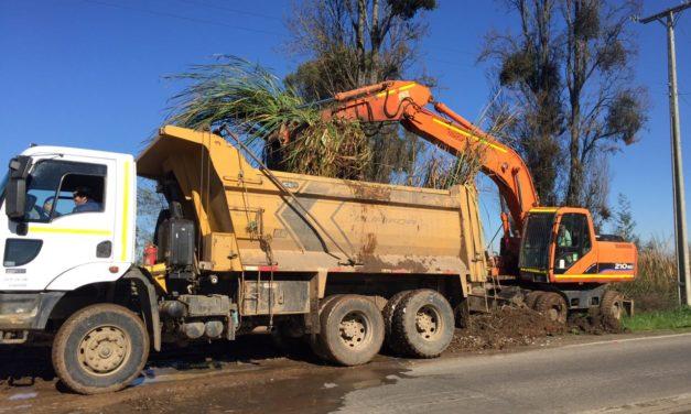Limpieza Canal Providencia